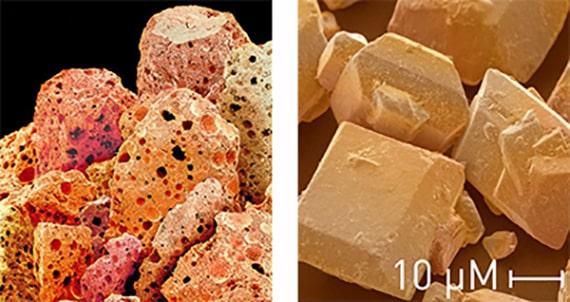 Grains de café et de sucre vus au microscope