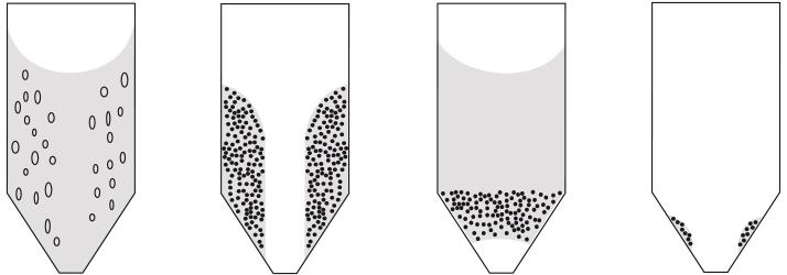Dévoûteur à fond conique - Palamatic Process